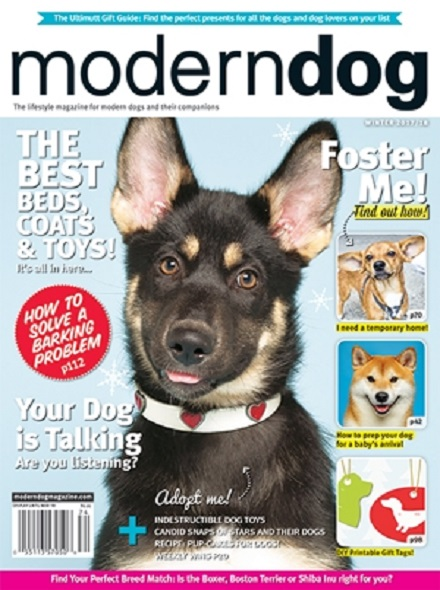 Subscription MODERN DOG
