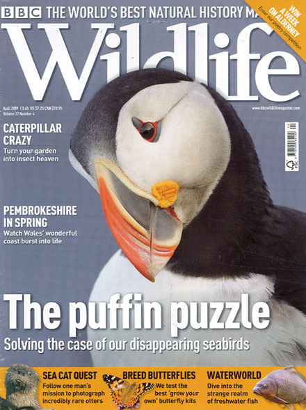 Subscription BBC WILDLIFE